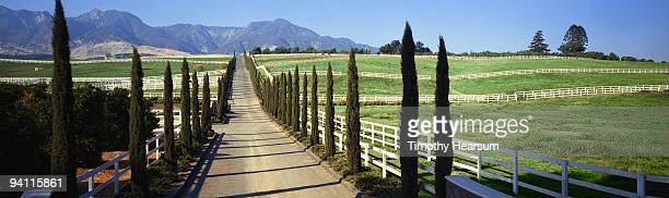 road through fenced pasture lands - timothy hearsum stock pictures, royalty-free photos & images