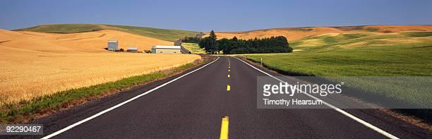 road through fields of ripe and unripe grain - timothy hearsum stock-fotos und bilder
