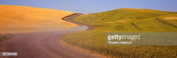 road through fields of ripe and unripe grain - timothy hearsum stockfoto's en -beelden