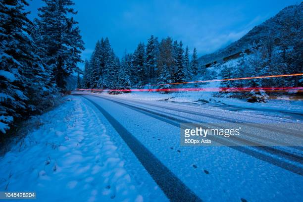 road through forest in winter, canada - image stock pictures, royalty-free photos & images