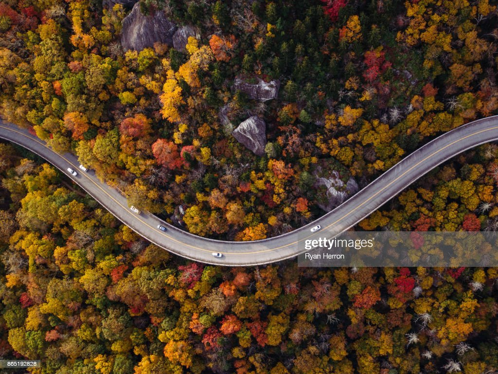 Road through forest with cars : Stock Photo