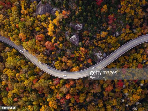 road through forest with cars - autumn falls stock pictures, royalty-free photos & images