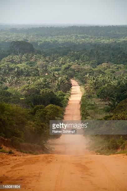 Road through jungle,  Zavora, Mozambique