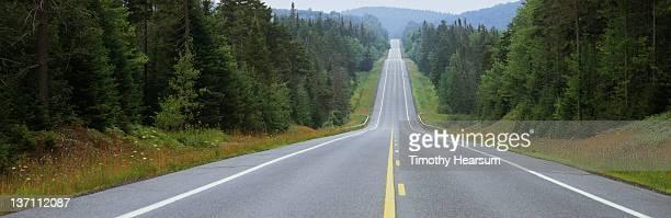 road through misty adirondack forest - timothy hearsum stock-fotos und bilder