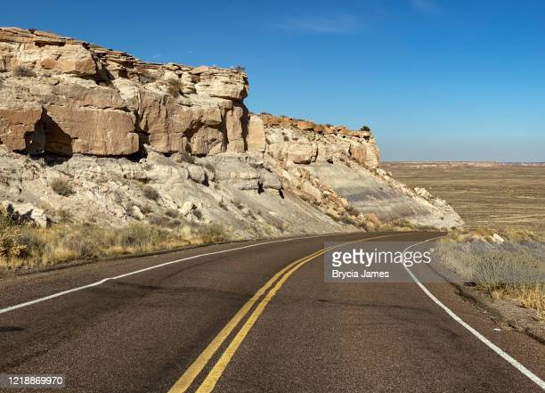 road through petrified forest national park - brycia james stock pictures, royalty-free photos & images