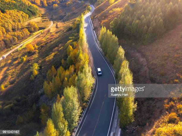 road through the autumn forest - van stock pictures, royalty-free photos & images