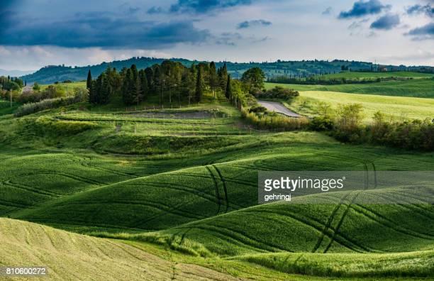 Weg door de velden van Toscane