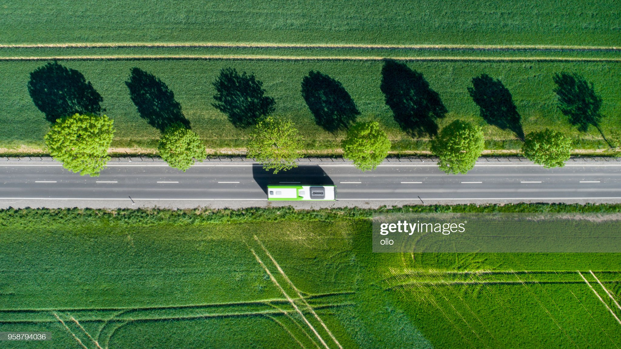 Road through the fields : Stock Photo
