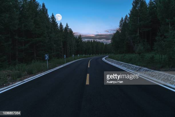 road through the forest at night - harvest moon stock pictures, royalty-free photos & images