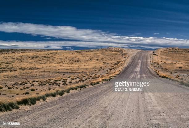 Road through the Patagonian steppe Patagonia Argentina