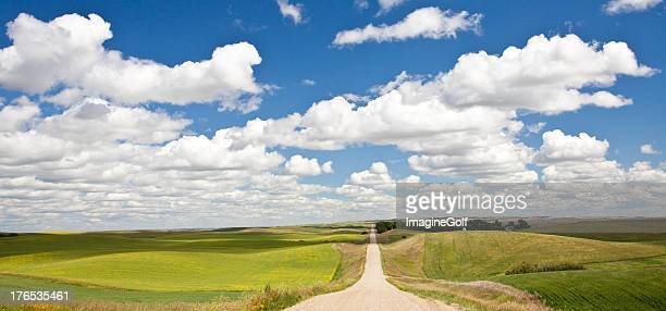 Road Through The Plains