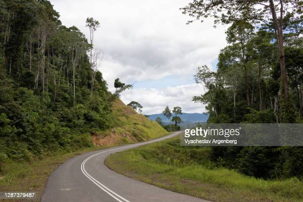 road through the wilderness, borneo, malaysia - argenberg stock pictures, royalty-free photos & images
