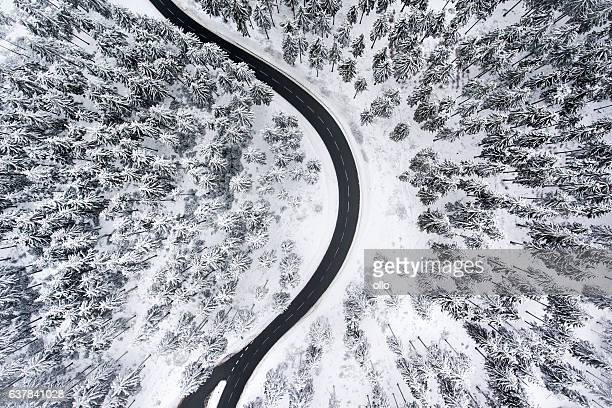 Road through the wintery forest - aerial view
