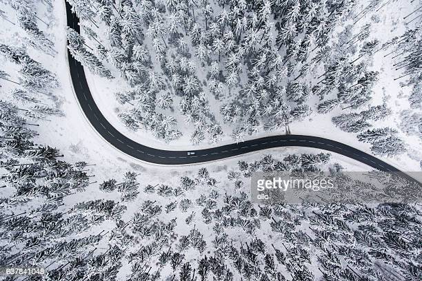 road through the wintery forest - aerial view - aerial view stock-fotos und bilder