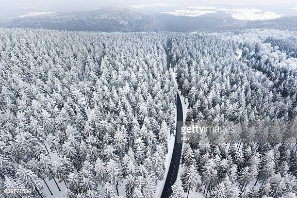 Road through the wintery forest - hoar frost, aerial view
