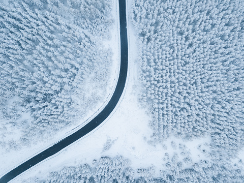 Road through the wintery forest - gettyimageskorea