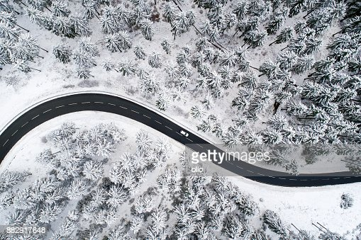 Road through the wintery forest