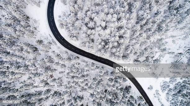 Route à travers la forêt hivernale