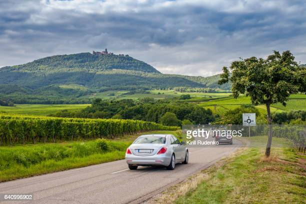 Road through vineyards in Alsace, France