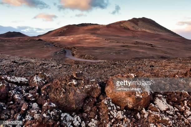 road through volcanic landscape in timanfaya national park - castanho imagens e fotografias de stock