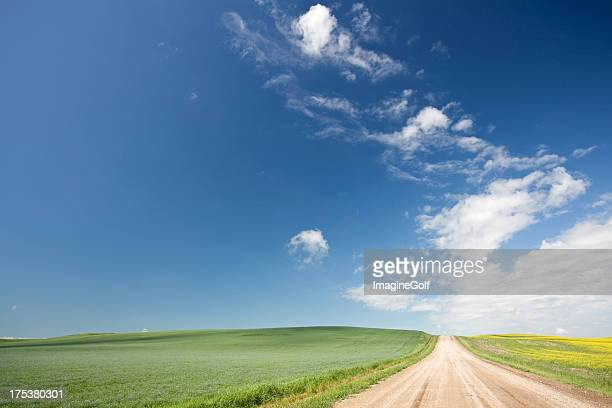 road through wheat field on the great plains - saskatchewan stock pictures, royalty-free photos & images