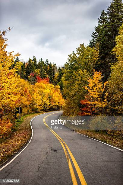 Road to Autumn colors