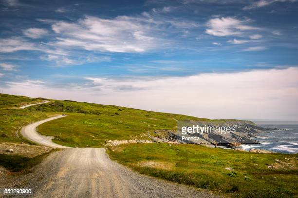 road to cape race - newfoundland and labrador stock pictures, royalty-free photos & images