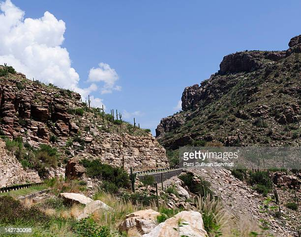 road to mt. lemmon - mt lemmon stock photos and pictures