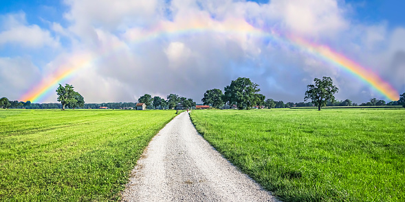Road to the Rainbow 1193144986
