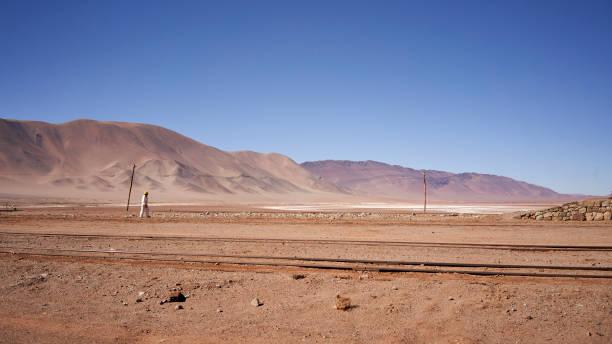 Road to Tolar Grande high Puna Province of Salta Argentina South America