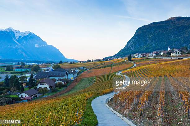 Road zum Vineyard