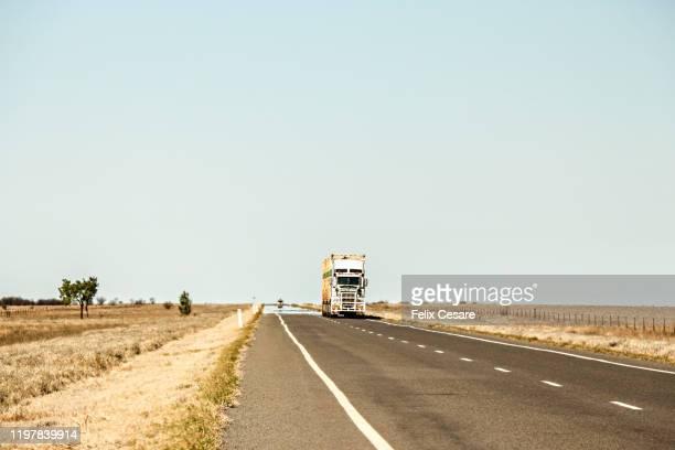a road train truck driving along the australian outback highway - territorio del norte fotografías e imágenes de stock
