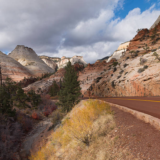 A Road Traveling Through Zion National Park Wall Art