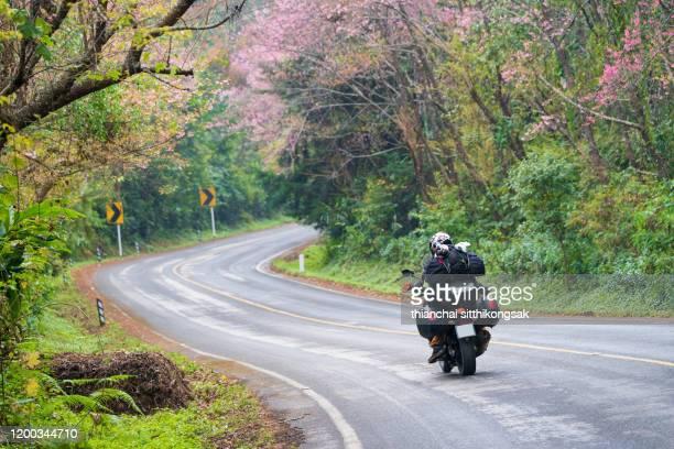 road trip on pink blossom road - オートバイ競技 ストックフォトと画像