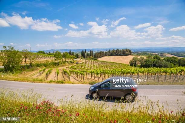 Road trip through the vineyards