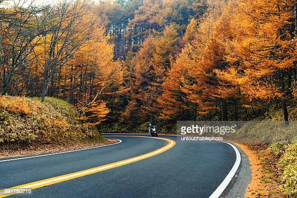 road trip to nikko national park - 栃木県 ストックフォトと画像