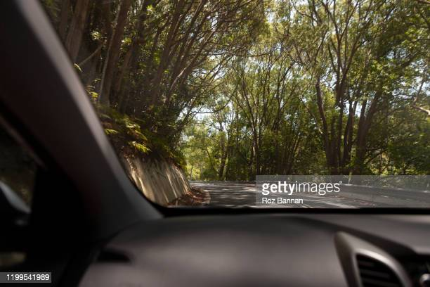 road trip window views - country road stock pictures, royalty-free photos & images