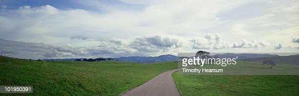 road winding through green pasture - timothy hearsum stockfoto's en -beelden