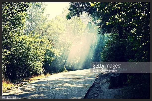Road with sunbeam in background