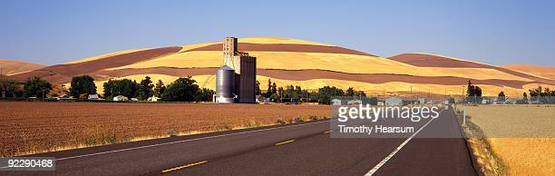 Road with wheat fields and grain elevator