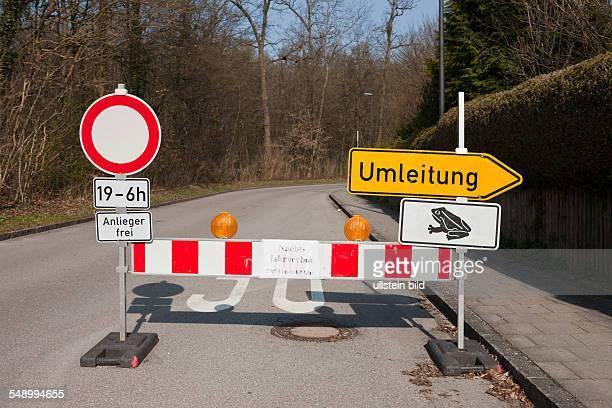 Roadblock for Toad Migration Bufo bufo Munich Bavaria Germany