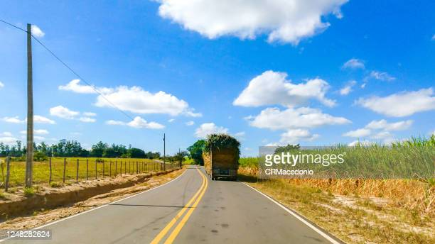 roads and highways in the rural area of piracicaba. - crmacedonio ストックフォトと画像