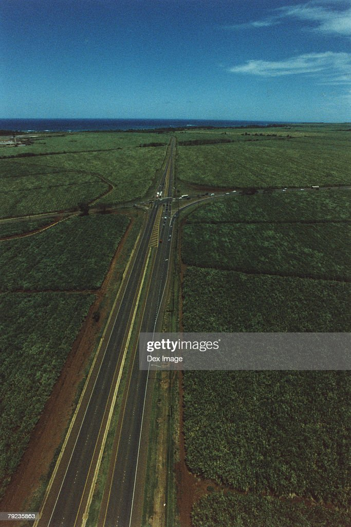 Roads through crop, Maui, Hawaii : Stock Photo