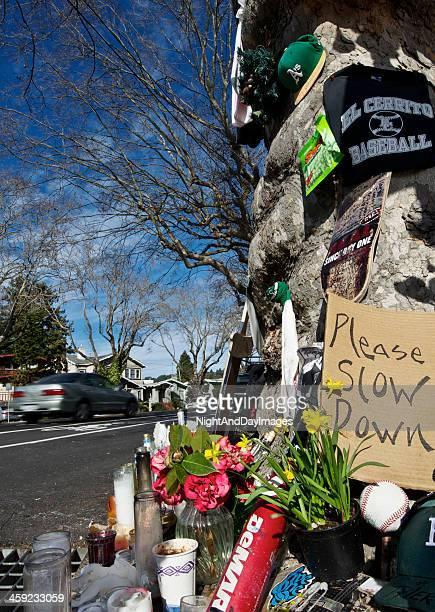 Roadside Crash Memorial