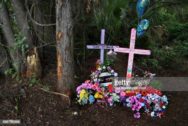 A roadside memorial marks the spot where a teen driver where killed when they hit this tree in an alcohol related accident A Washington PostKaiser...