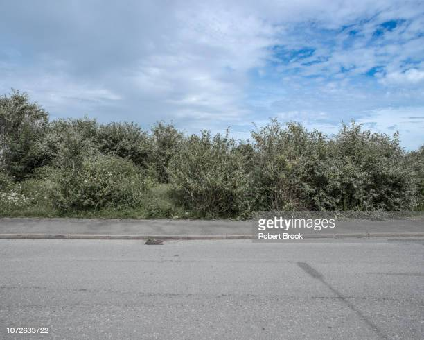 roadside - roadside stock pictures, royalty-free photos & images