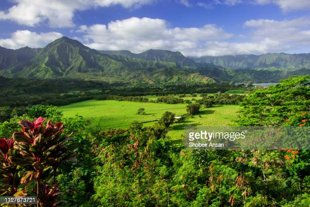 roadside scenic overlook, kauai, hawaii - kauai stock pictures, royalty-free photos & images