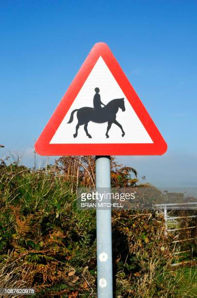 roadside traffic warning signs for vehicle drivers, horse riders - pericolo foto e immagini stock