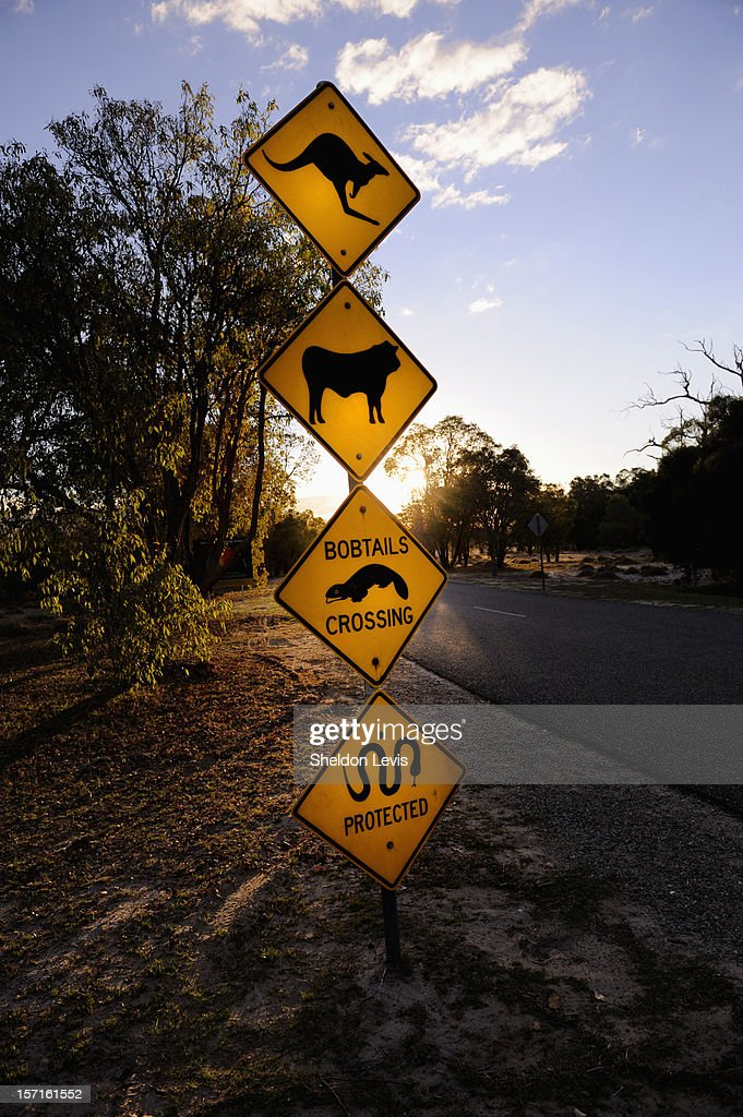 Roadside warning sign : Stock Photo