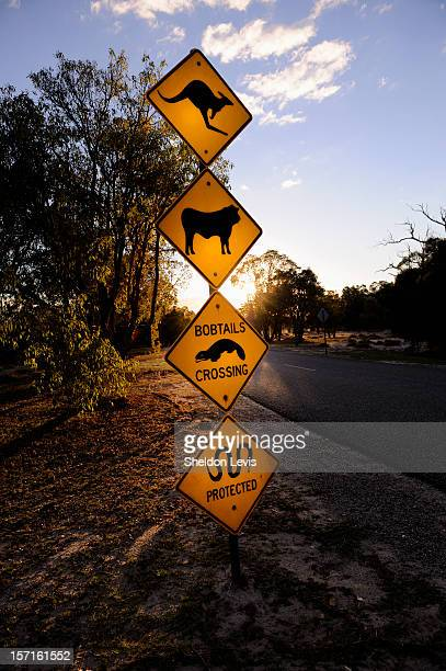 roadside warning sign - by sheldon levis stock pictures, royalty-free photos & images